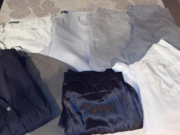 Forum Dukan : lot t46 6 pantacourt 1 pantalon 1 chemisier 1 haut prix 10e
