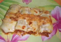 Photo Dukan Cannelloni de poireaux