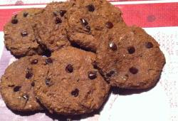 Photo Dukan Cookies choco/tofu