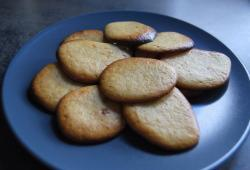 Photo Dukan Biscuits